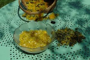 Ma recette de gelée de Pissenlit-Miel de Pissenlit-Cramaillotte dans Recettes miel-de-pissenlit1-300x200
